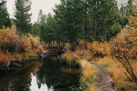 9_camping-in-mammoth-day-four-069