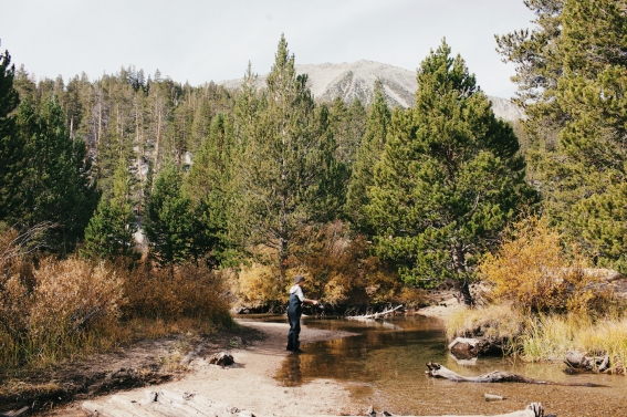 9_camping-in-mammoth-day-four-073
